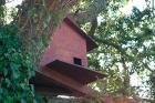 A Barn Owl Nestbox